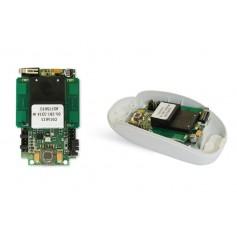 RADAR BITECHNOLOGIE  Mouse 09/P