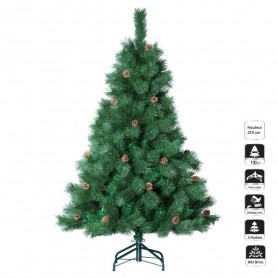 SAPIN MORNING 210 CM